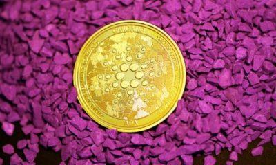 कार्डानो, बिटटोरेंट, डॉगकोइन मूल्य विश्लेषण: 25 सितंबर